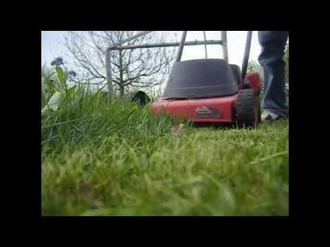pierwsze koszenie trawnika-wiosenne prace w ogrodzie