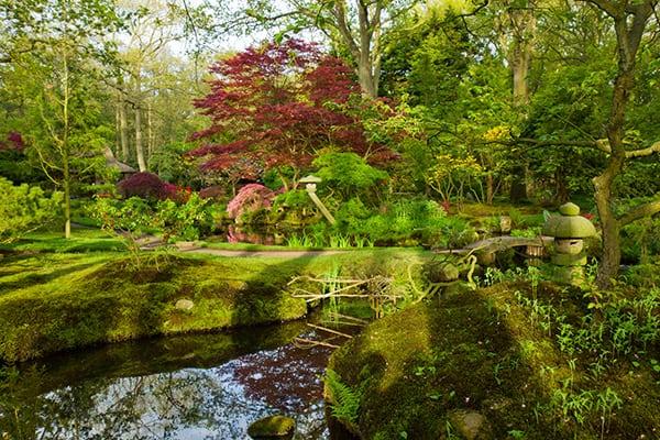 ogrod naturalistyczny