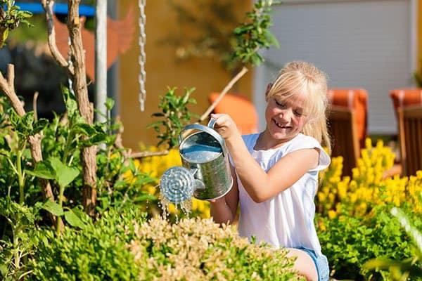 pielegnacja ogródka