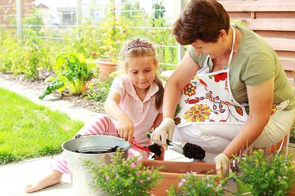 warzywa ziola ogrodzie