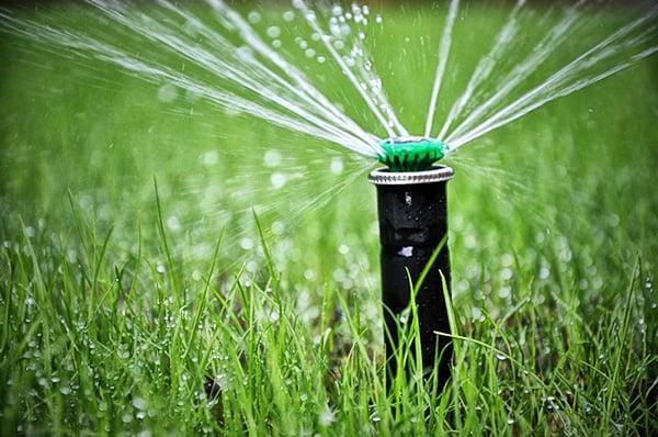 Jakie są największe zalety systemu nawadniającego?