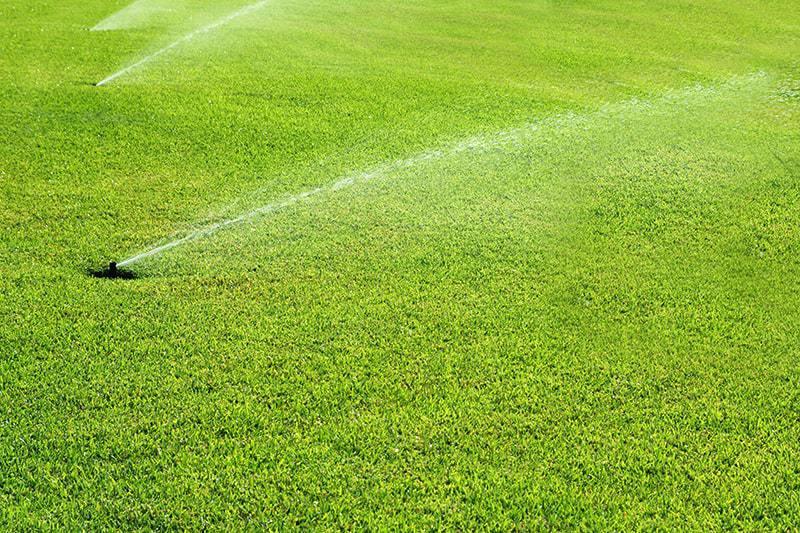 Skąd czerpać wodę i jak nią gospodarować?