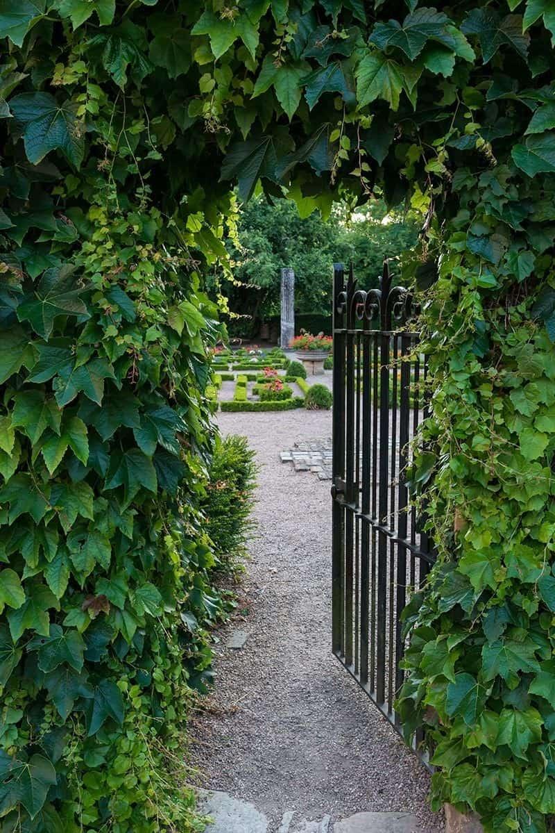 Jakie warunki techniczne muszą spełniać ogrodzenia?