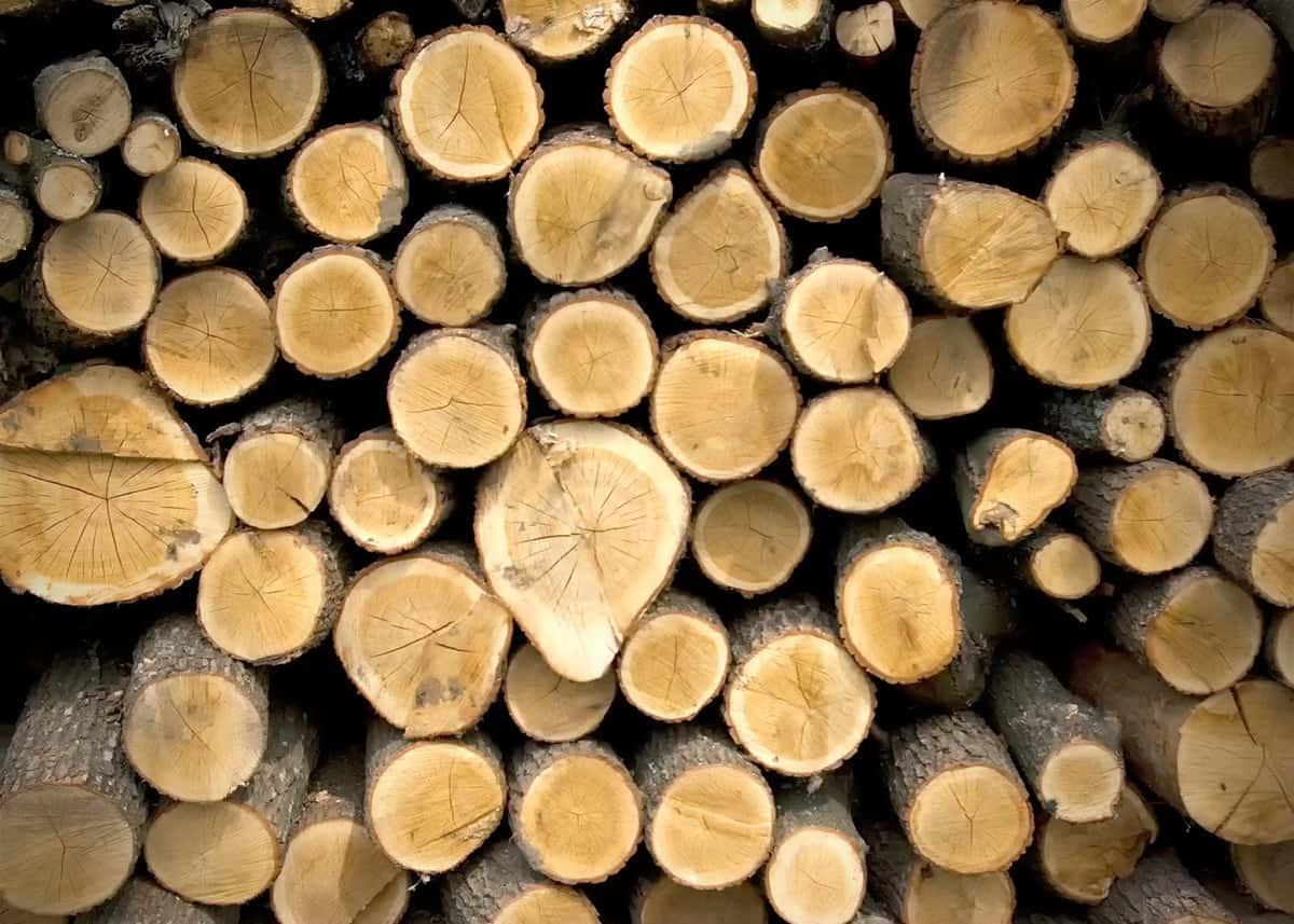 Jakie drewno na więźbę dachową?