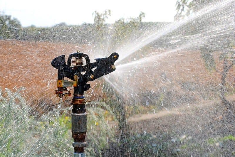 Podlewanie ogrodu wodą ze studni