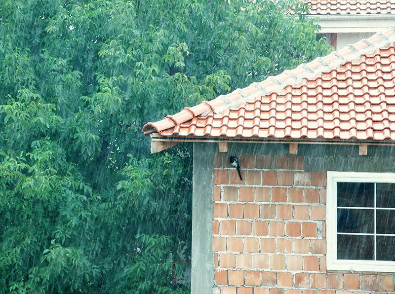 System ponownego wykorzystania deszczówki warto zaplanować podczas budowy domu