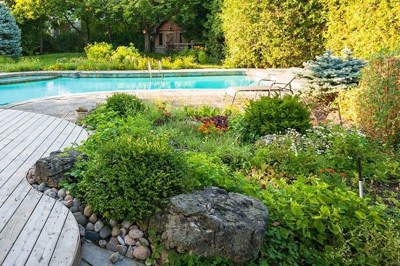 Jak zadbać o ogród skalny?
