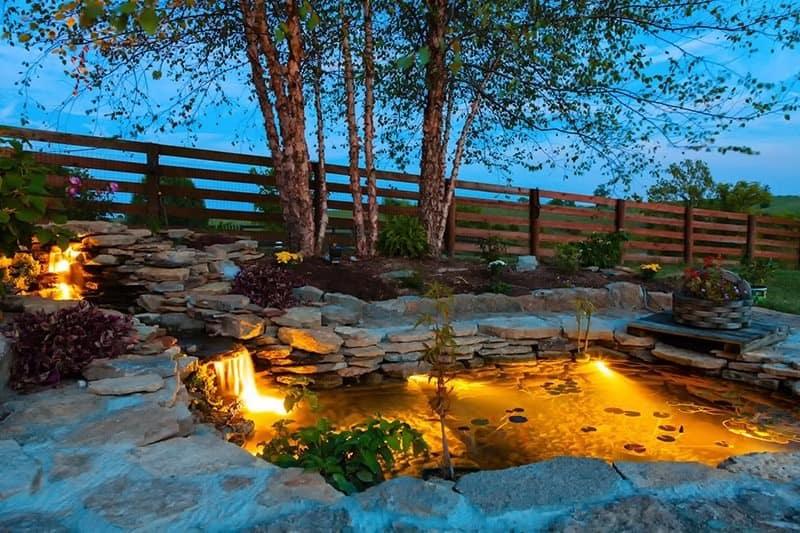 Skalniak przy oczku wodnym w ogrodzie
