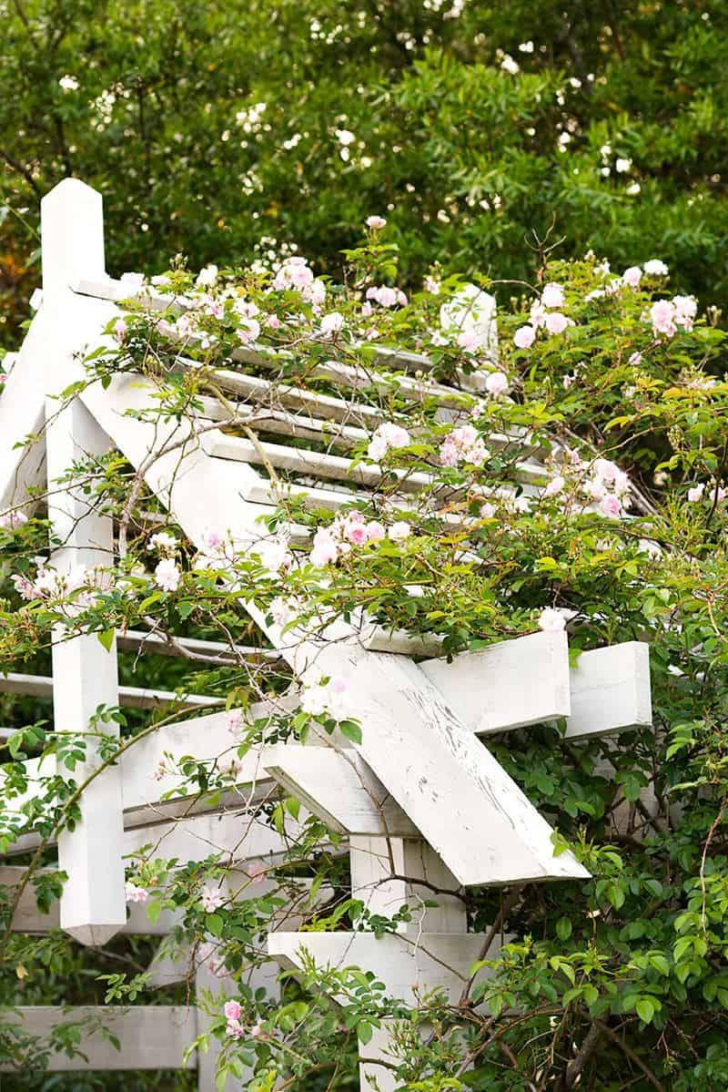 Altany ogrodowe drewniane