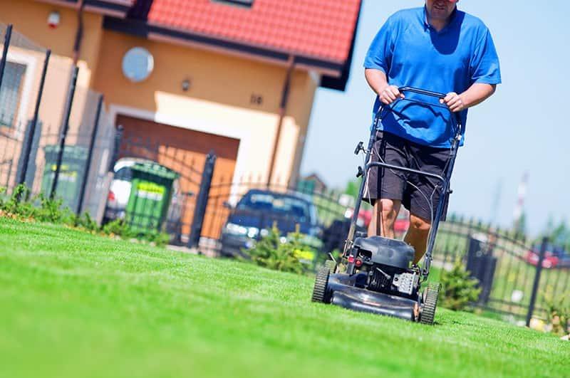 Inteligentny Koszenie trawy: jak, czym i kiedy powinno się kosić trawnik? XW42