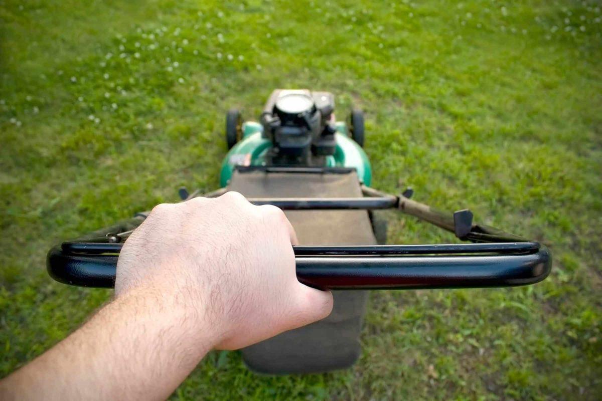 Zupełnie nowe Koszenie trawy: jak, czym i kiedy powinno się kosić trawnik? PG17
