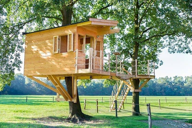 Domek na drzewie: jak go zbudować i ile kosztuje domek na drzewie?