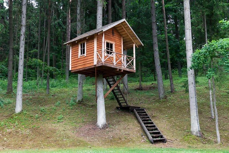 Domek na drzewie nie tylko dla dzieci