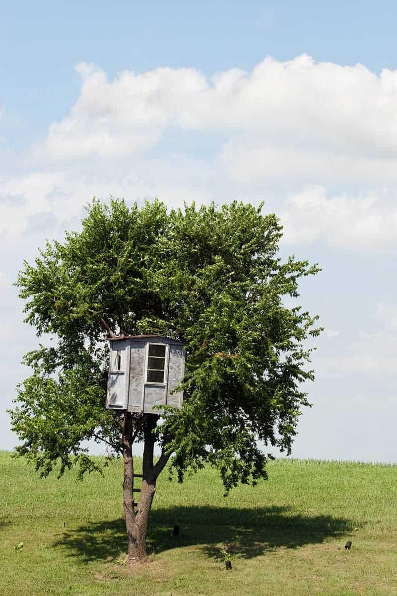Domek na drzewie cena