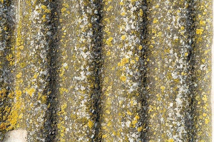 Powolne usuwanie azbestu
