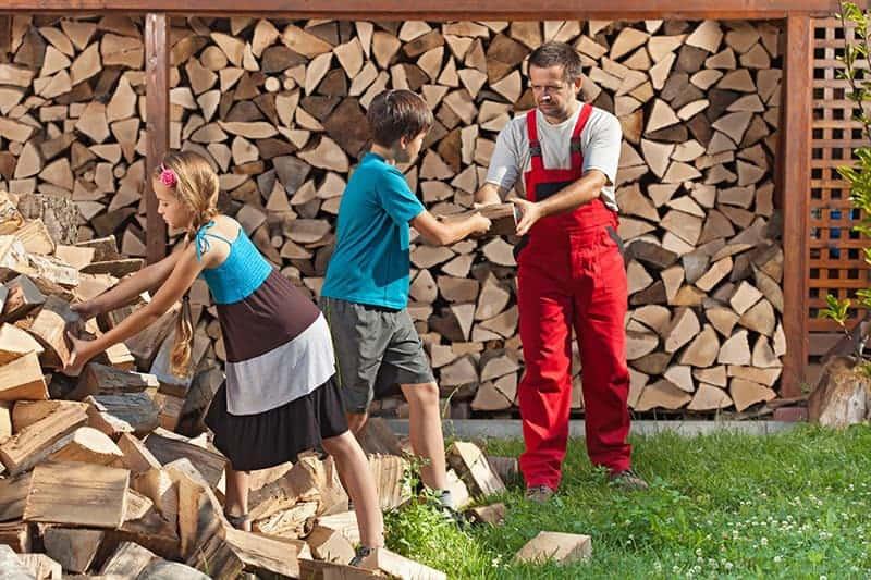 Drewutnia na drewno