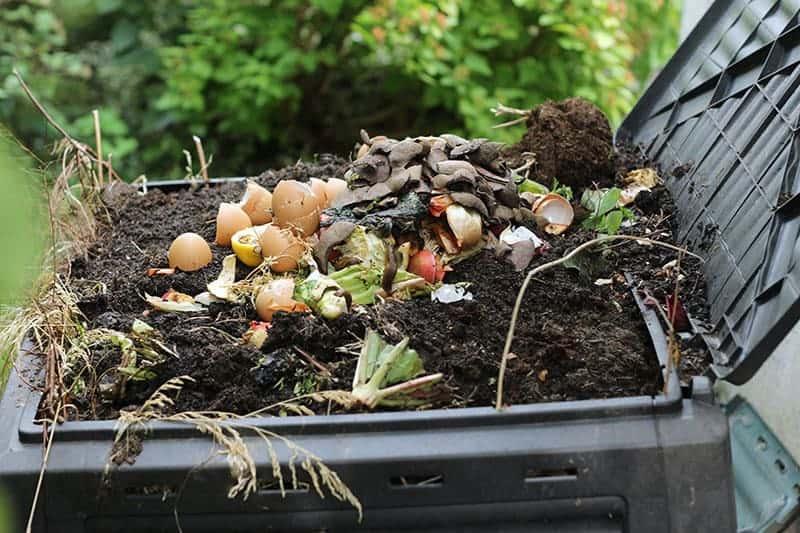 Jak zrobić kompost?