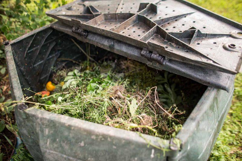 Kompostownik: jak zrobić kompostownik domowy?