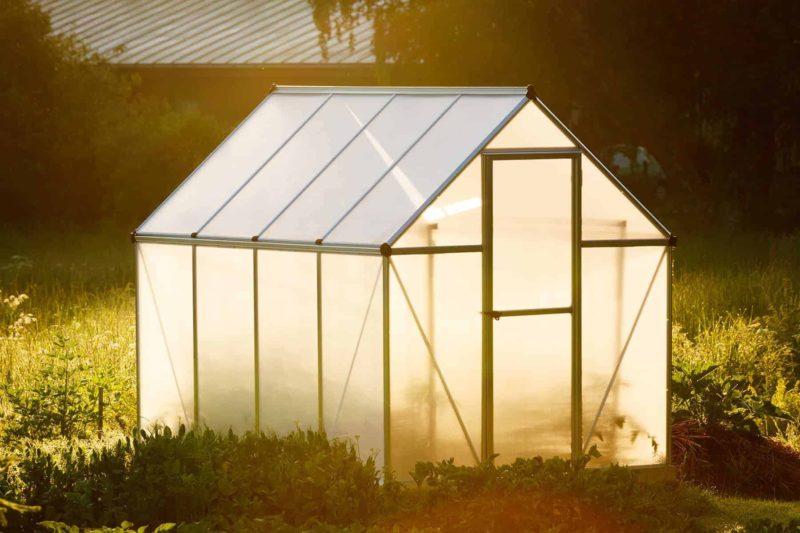 Szklarnia ogrodowa: z foli, poliwęglanu czy okien? Budowa szklarni krok po kroku