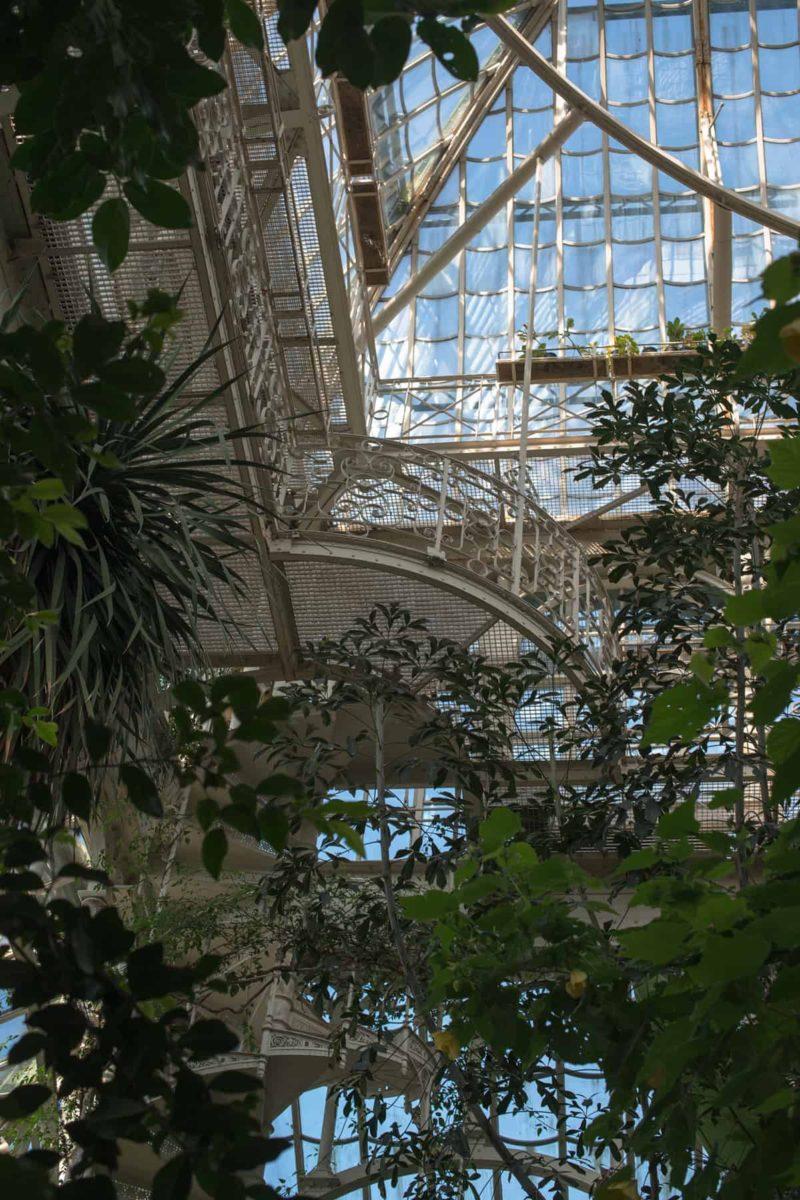 Ogród zimowy na tarasie i balkonie: cena, projekt i materiały