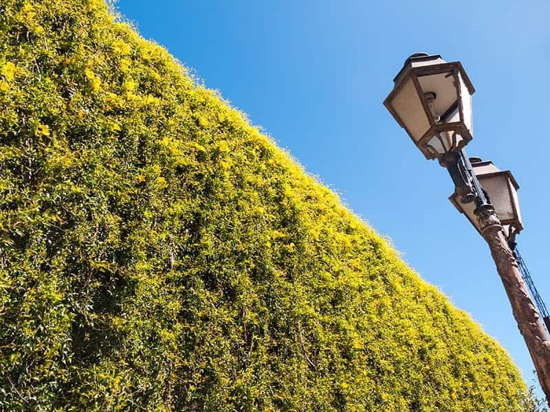 Lampy Ogrodowe Rodzaje Ceny I Montaż Oświetlenia Ogrodowego
