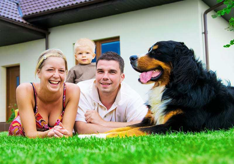 Ubezpieczenia domu cena