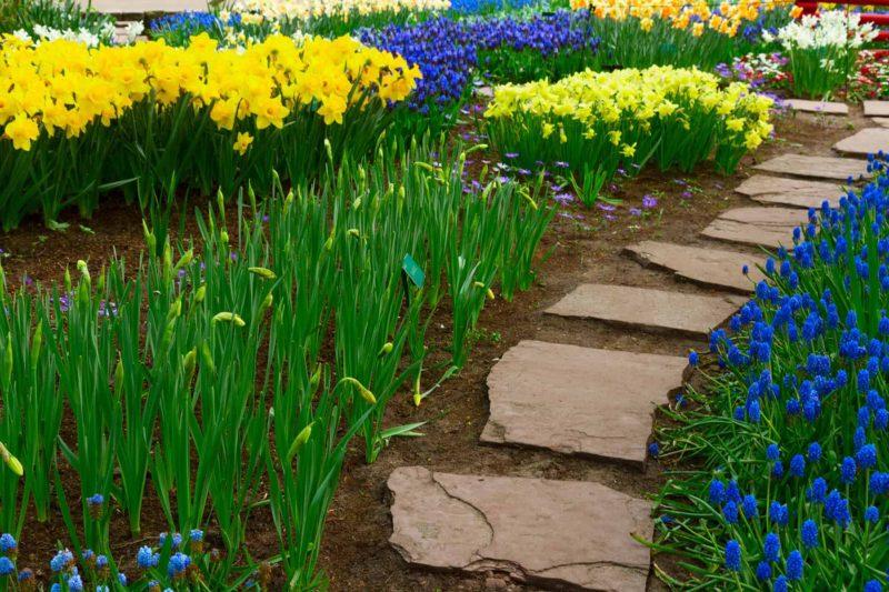 Ścieżki w ogrodzie: materiały i aranżacja ścieżek ogrodowych