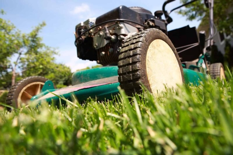 Kosiarka spalinowa 800x532 - Kosiarka spalinowa: jak wybrać najlepszą kosiarkę do trawy?