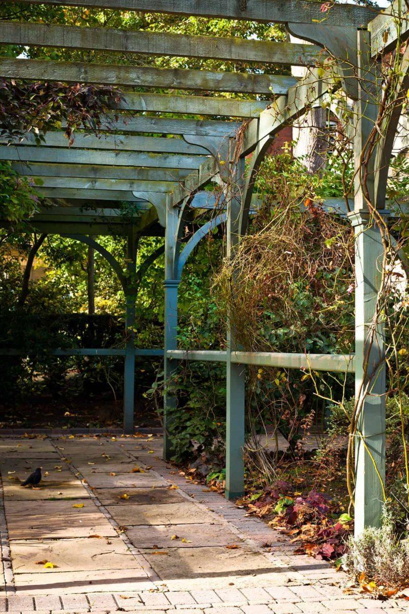 pergola ogrodowa 800x1200 - Pergola ogrodowa: rodzaje, wymiary, ceny i budowa [krok po kroku]