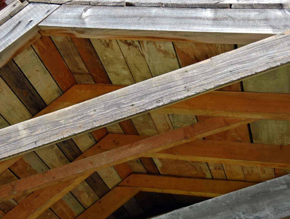 Dach jętkowy