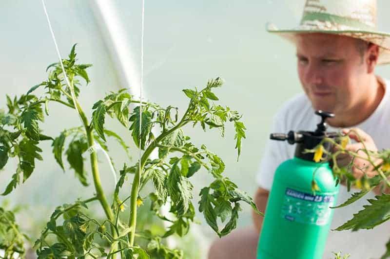 Dawkowanie środków ochrony roślin