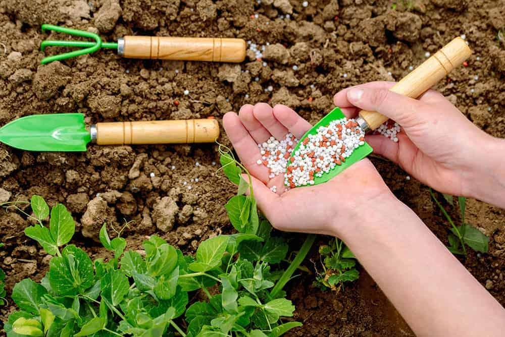 Rodzaje nawozów do ogrodu