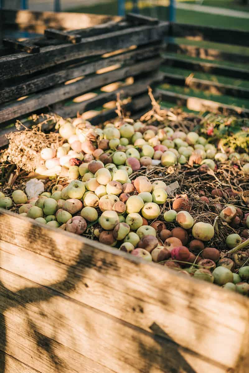 Nawóz naturalny kompost