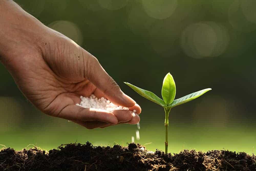 Po co i kiedy nawozi się glebę?