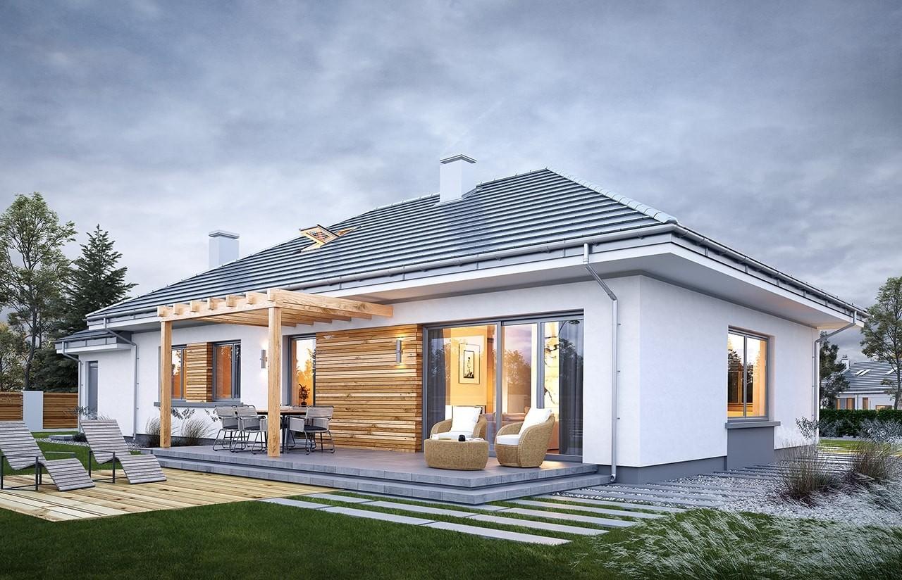 Projekt domu Wymarzony 11 - wizualizacja tylna