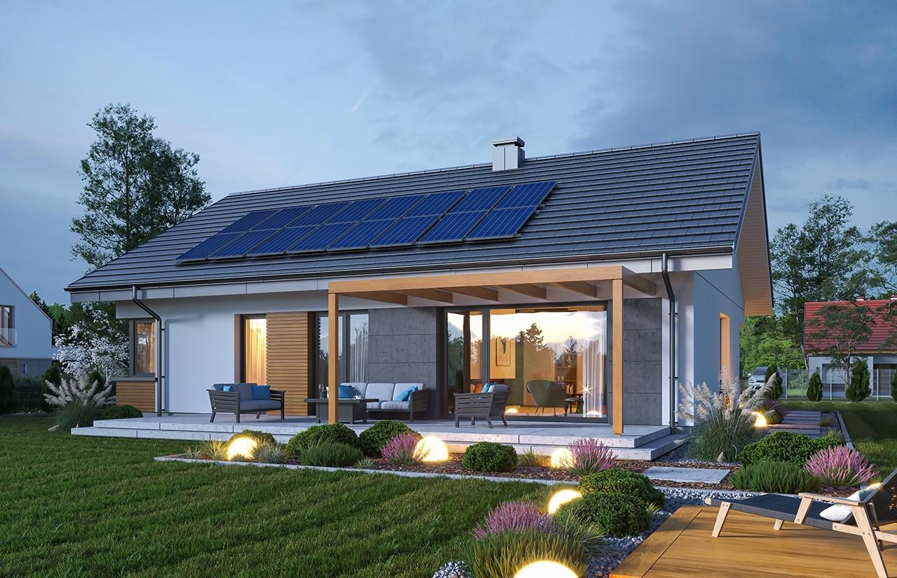Projekt domu Dom na praktycznej 2 - wizualizacja ogrodowa odbicie lustrzane