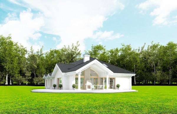 Animacja - Projekt domu Rezydencja parkowa 2