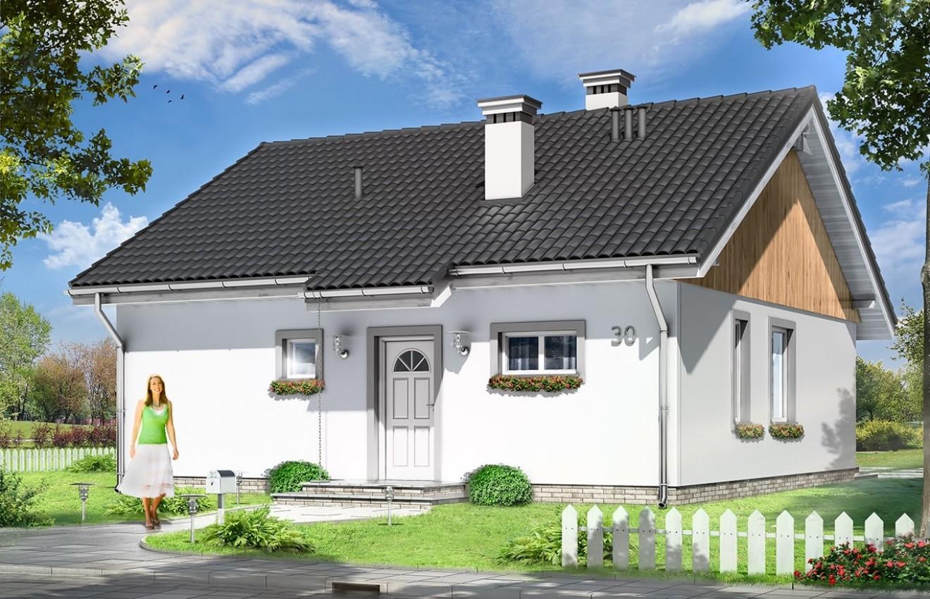 Projekt domu Zosia - wizualizacja frontowa