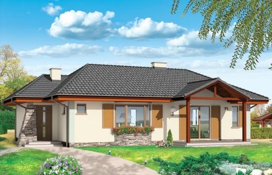 Projekt domu D05 - wizualizacja frontowa
