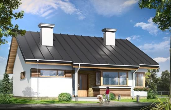 Projekt domu Dom dla trojga - wizualizacja frontu