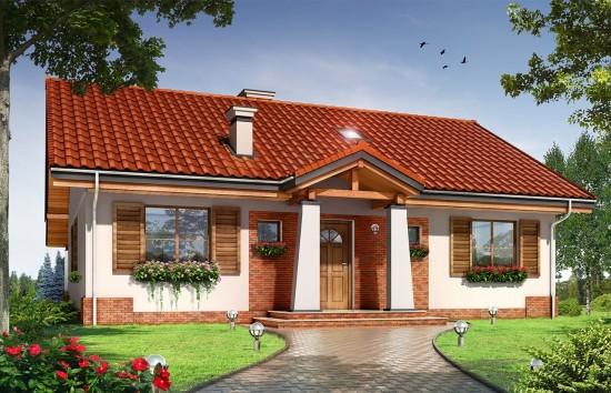 Projekt domu Niezapominajka - wizualizacja frontowa