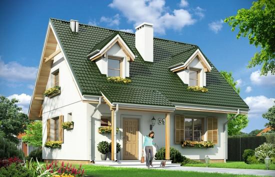 Projekt domu Poziomka - wizualizacja frontowa