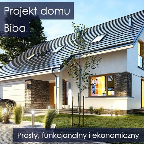 Projekt domu Biba